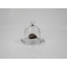 queijeira p transparente casa cafe e mel 3