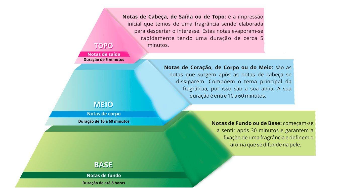piramide olfativa i9life3
