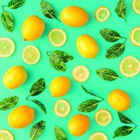 jogo americano de tecido citrus cortbras verde agua com limoes 8091 casa cafe e mel