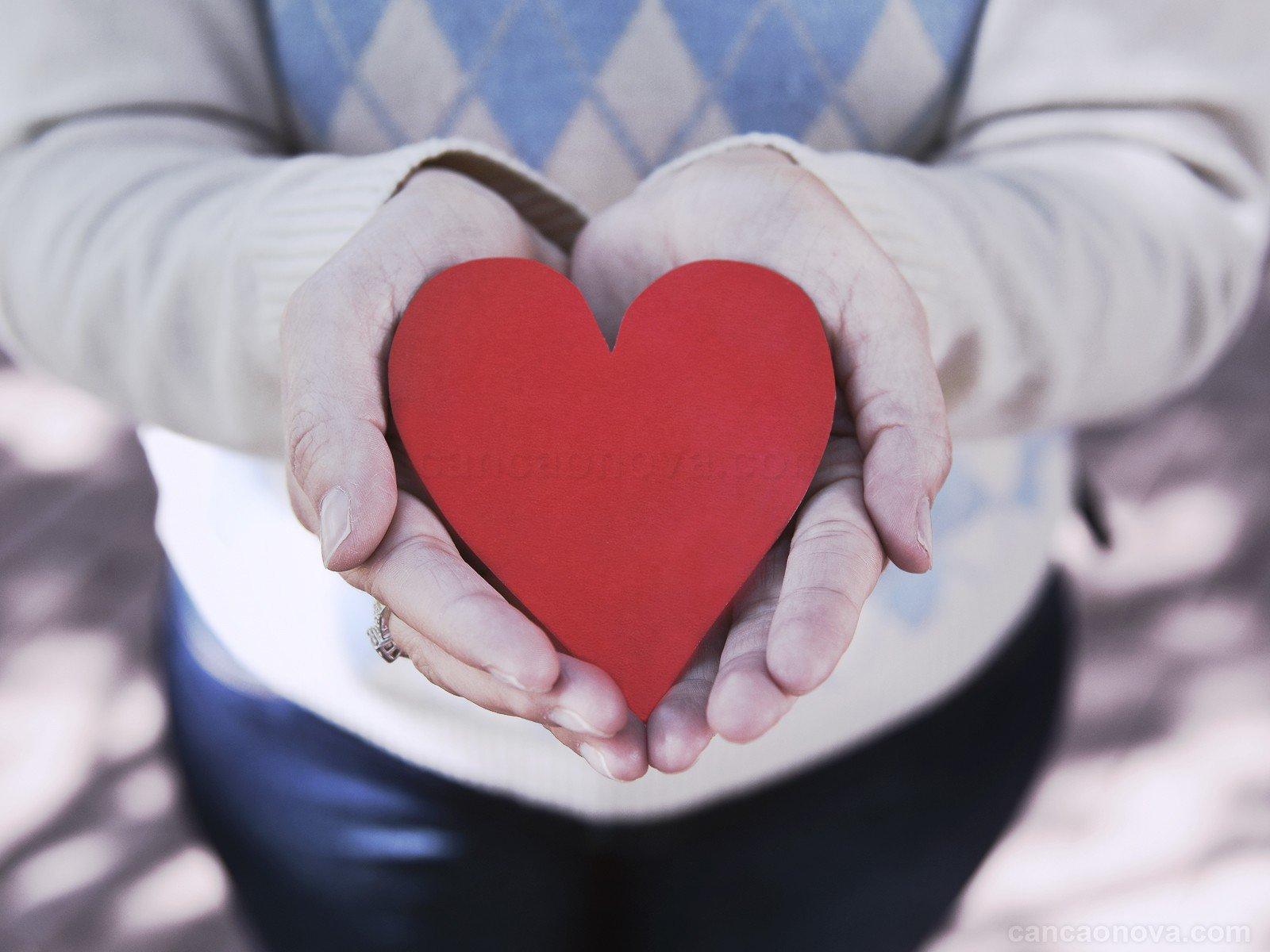 formacao o amor e o que cura