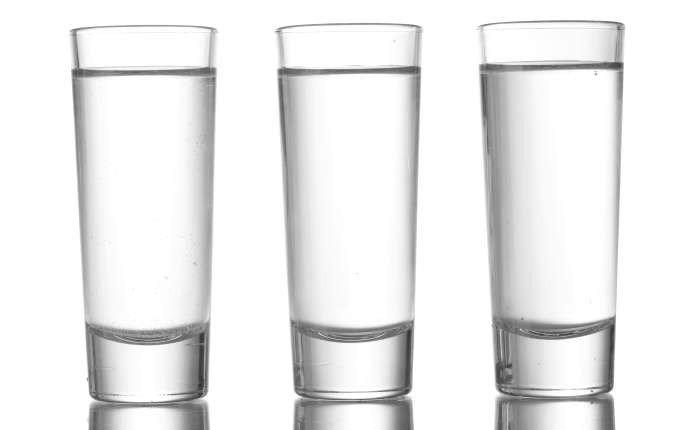 tipos de copos shot